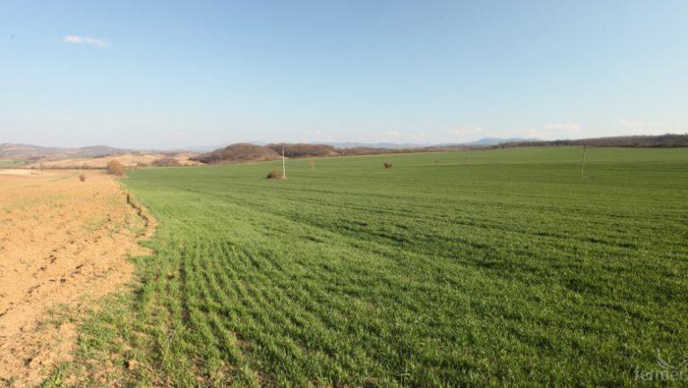 37 лв. на декар е средната цена за аренда на земеделска земя в Ямболска област